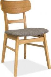 Jídelní čalouněná židle CD-61 šedá/dub