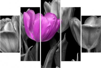 Obraz, s motivem, 100x70 TYP B, F003592F
